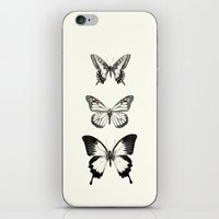butterflies iPhone & iPod Skins featuring Butterflies // Align by Amy Hamilton
