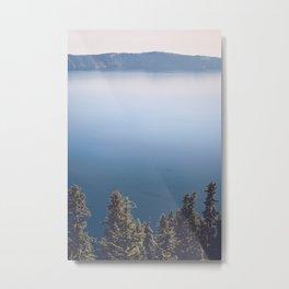 Wild Lake Metal Print
