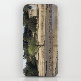 Horseshoe Lake, Chico California iPhone Skin