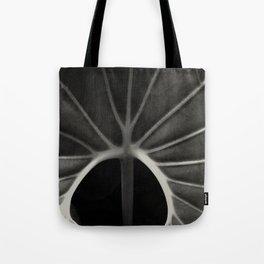 Nature déposée décomposée 1 Tote Bag