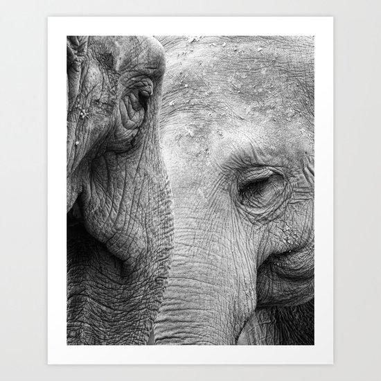 A pair of Pachyderms Art Print