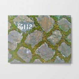 mossy stone marker Metal Print