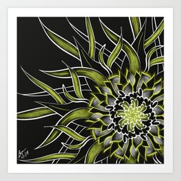 Fresh Anemone Art Print