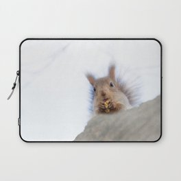Squirrel with a walnut Laptop Sleeve