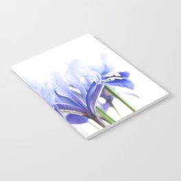 Bue Iris 2 Notebook