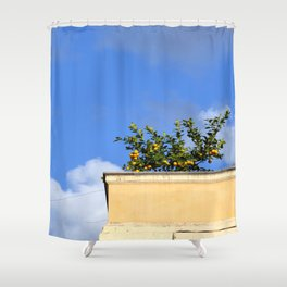 Fruits of Rome Shower Curtain