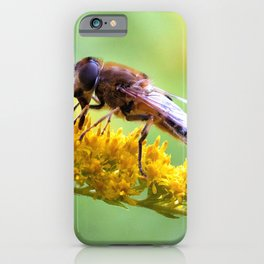 Hoverfly At Breakfast Macro Close Up iPhone Case