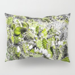 texture of the green cactus with white flower in the desert Pillow Sham