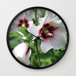 Rose of Sharon Hibiscus syriacus Wall Clock