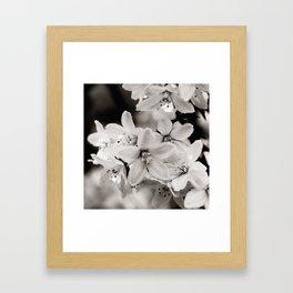 Little Whites ~ No.2 Gerahmter Kunstdruck