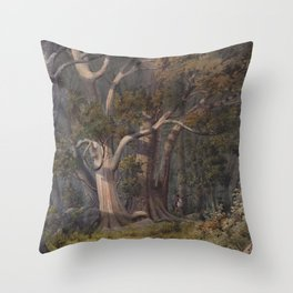 Alfred Sharpe - Burial Place of Hone Heke, Bay of Islands (1883) Throw Pillow