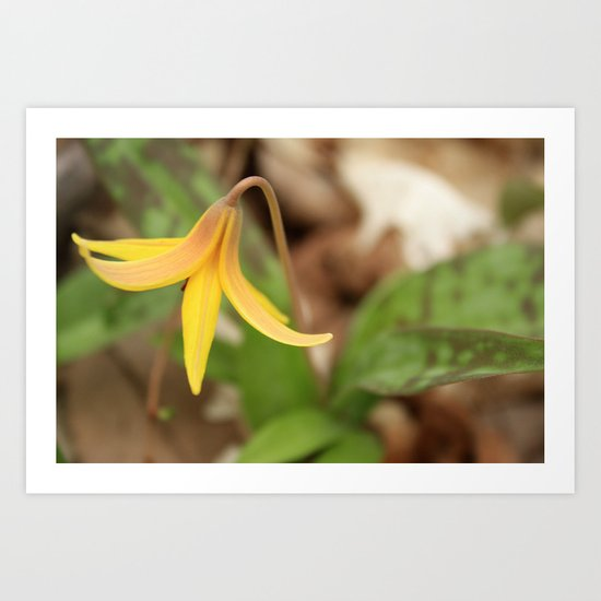 Gracefully Nodding Art Print