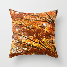 Maple tree foliage Throw Pillow