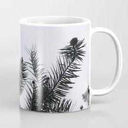 Silver Fir Abies Alba Abstract Coffee Mug