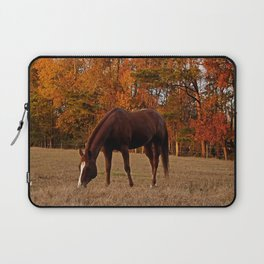 Horse Fall Days of Grazing Laptop Sleeve