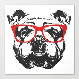 Portrait of English Bulldog with glasses. Canvas Print