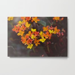 Autumn Vibes Metal Print