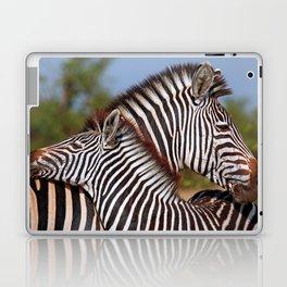Zebra love, Africa wildlife Laptop & iPad Skin
