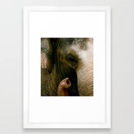 Elefont Framed Art Print