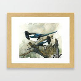 Magpies Framed Art Print