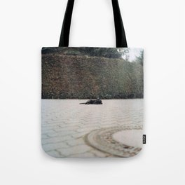 Queen of the Street Tote Bag