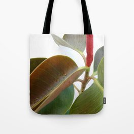 Green Plant Leaves 02 Tote Bag