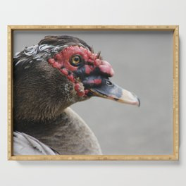 ugly muscovy duck Serving Tray