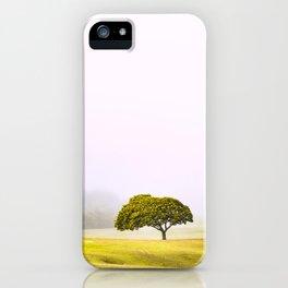 Tree in mist iPhone Case