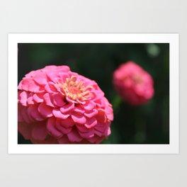 MORE PINK FLOWERS Art Print