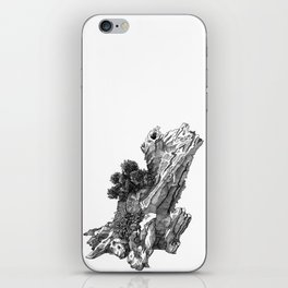 Climbers 1 iPhone Skin