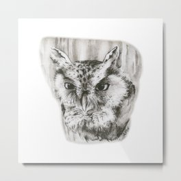 Owl Stare by annmariescreations Metal Print