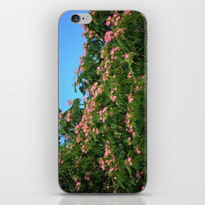 Mimosa Branch iPhone Skin