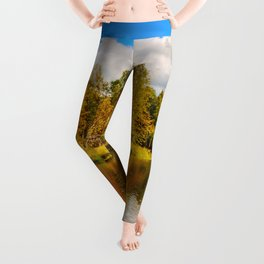Indian summer Leggings