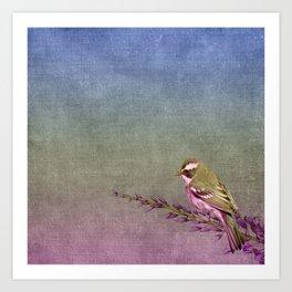 Beautiful bird sitting on brach with purple flowers Art Print