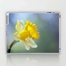 Daffodil 9909  Laptop & iPad Skin