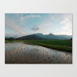 Hawaii New 18x24 Canvas Print