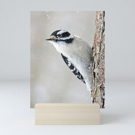 Wintertime Downy Woodpecker Mini Art Print