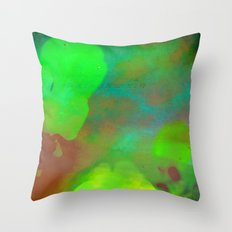 Her Heart Held Many Colors Throw Pillow