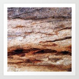 Shiver Me Timbers - 2 Art Print