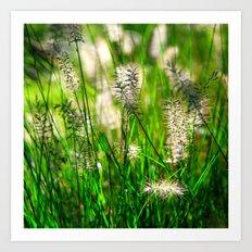 Grass (1) Art Print