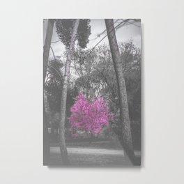 Cover Metal Print