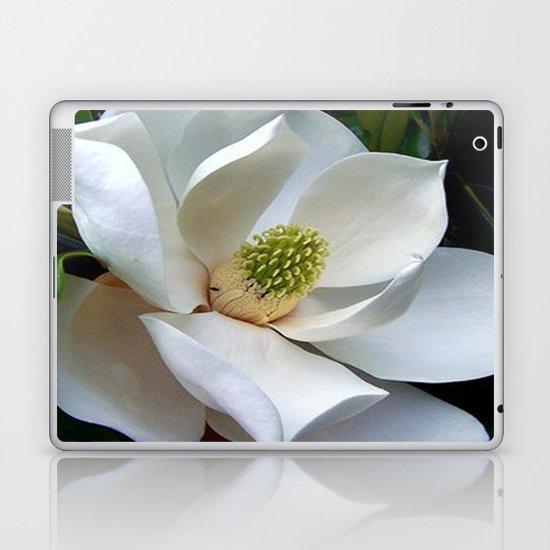 Backyard Magnolia Laptop & iPad Skin