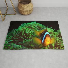 Anemone Fish in Green Anemone Rug