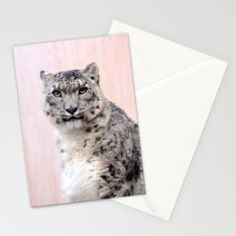 Snow Leopard in Pink Stationery Cards