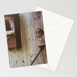 Curious Owl (Montreal, Canada) Stationery Cards