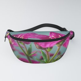 Saxifrage Flowers Fanny Pack