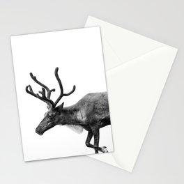 Animal Photography | Reindeer Minimalism | Antlers Christmas | Rudolf Stationery Cards