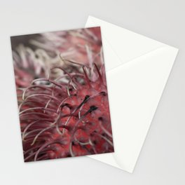 Fruit at a Street Market in Hawaii Stationery Cards
