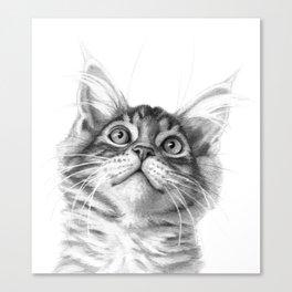 Kitten looking up G115 Canvas Print