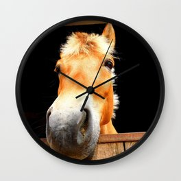 Horse Face Close Up Accentuating his Nose Wall Clock
